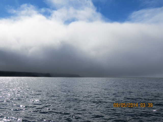 * Secret northern Coho hotspot - look at the weather!