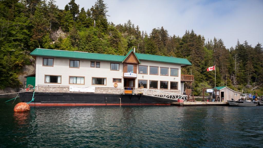 * Calm morning at North Island Lodge.
