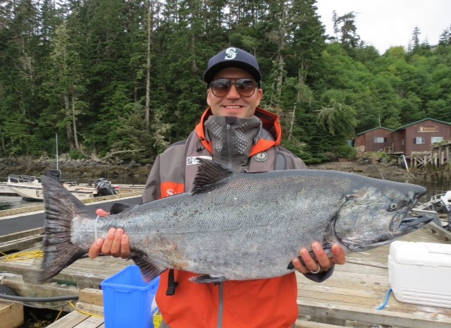 CH Report: Chinooks & Whales Ever Present: A Feeding Frenzy! ~ August 18, 2015