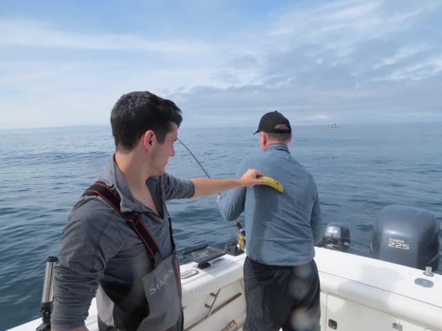<em>* Bananas no problem on our vessel. <em>