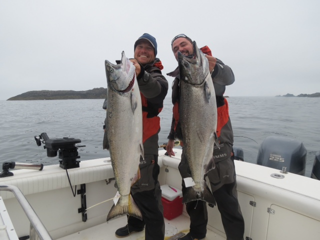 A pair of nice June Chinooks