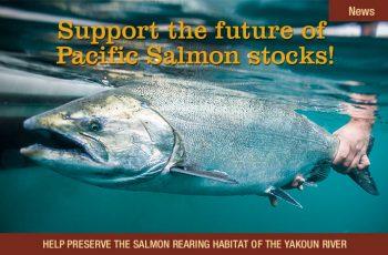salmonpreserve_featurearticle_725x465