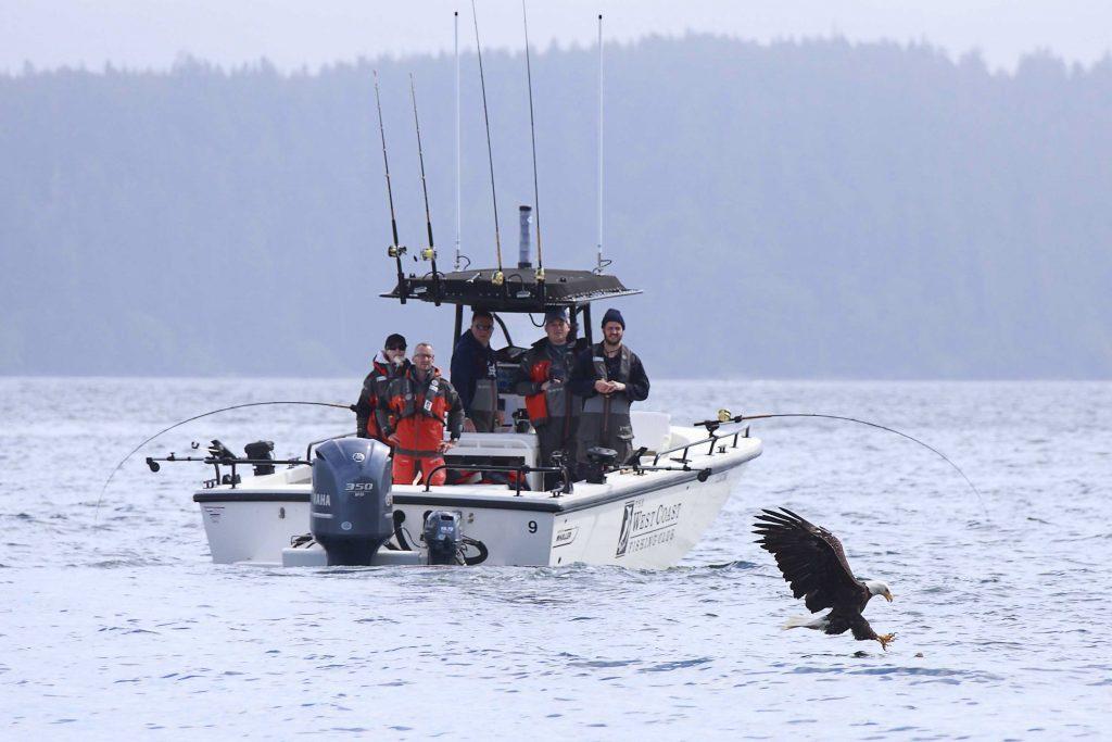 <em>* Eagle getting in on the action. </em>